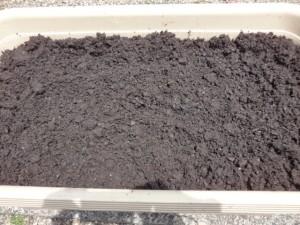 プランターに培養土を入れる