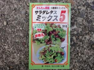 サラダレタスミックス種